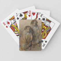 Prairie dog Playing card