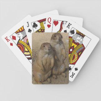 Prairie dog Playing card