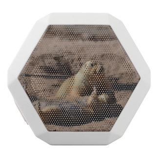 Prairie Dog Playing Dead White Boombot Rex Bluetooth Speaker
