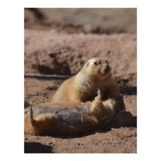Prairie Dog Playing Dead Letterhead