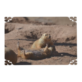 Prairie Dog Playing Dead Laminated Place Mat