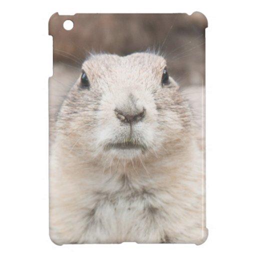 Prairie dog portrait iPad mini case