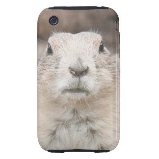 Prairie dog portrait tough iPhone 3 case