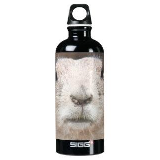 Prairie dog portrait water bottle