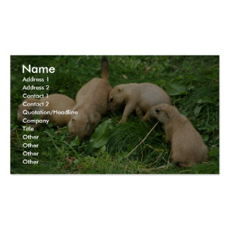 Prairie Dog Pups Scramble Double-Sided Standard Business Cards (Pack Of 100)