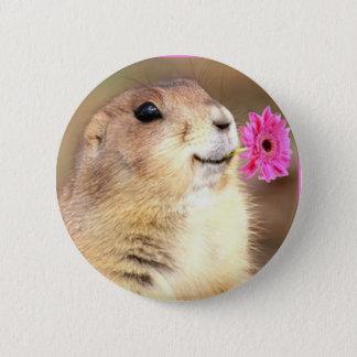 Prairie dog round button