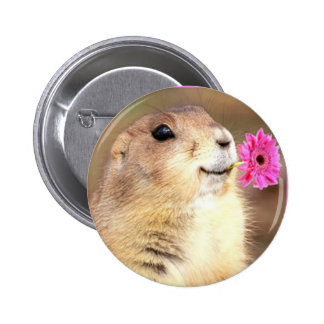 Prairie dog round button