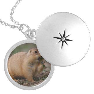 prairie dog round locket necklace