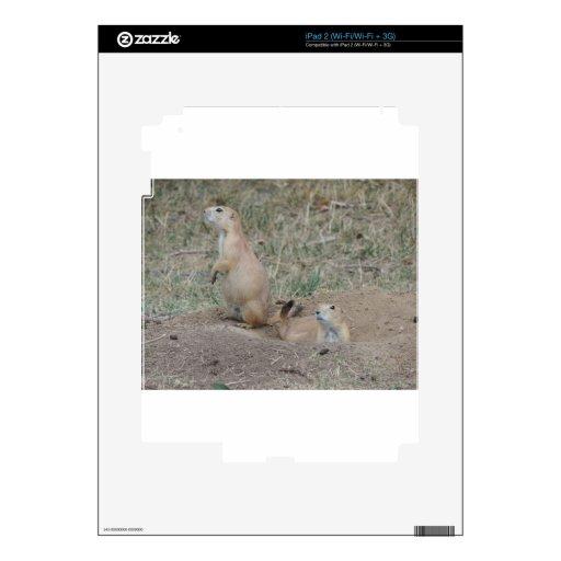 Prairie Dog iPad 2 Decals