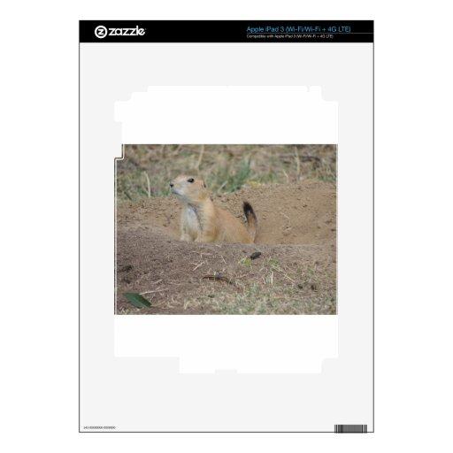 Prairie Dog Skin For iPad 3