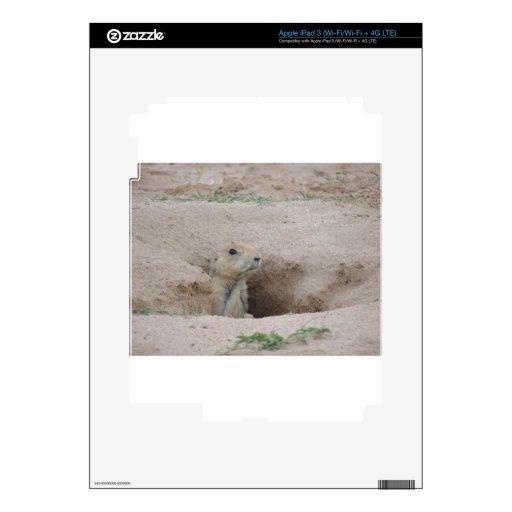 Prairie Dog iPad 3 Skin