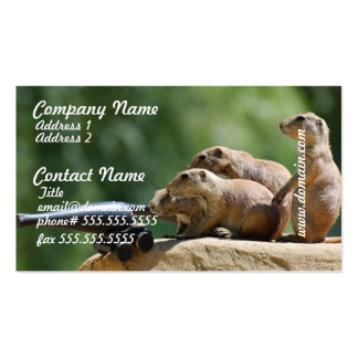 Prairie Dog Soldiers Business Cards