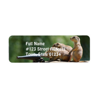 Prairie Dog Soldiers Mailing Labels