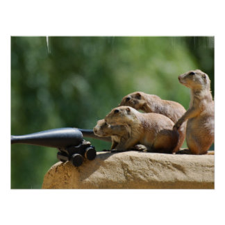 Prairie Dog Soldiers Poster