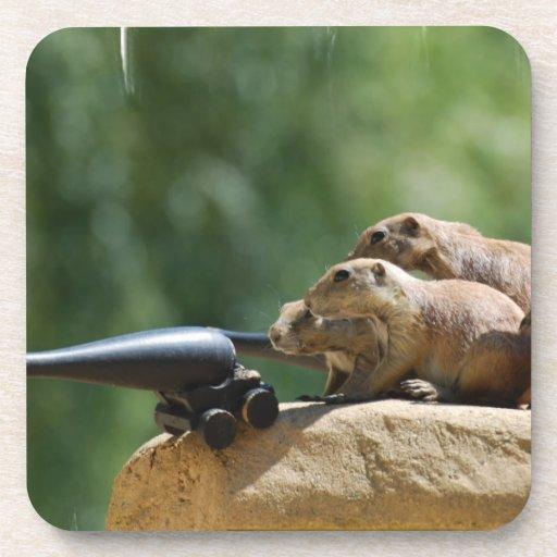 Prairie Dog Soldiers Set of Six Coasters