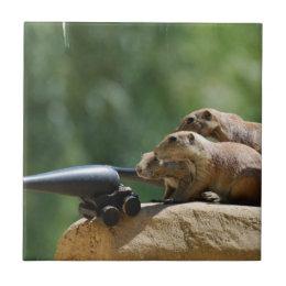 Prairie Dog Soldiers Tile