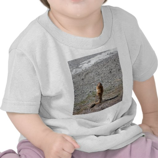 Prairie Dog Tee Shirt