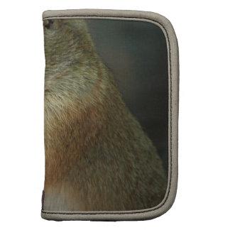 Prairie Dog Wallet Organizer