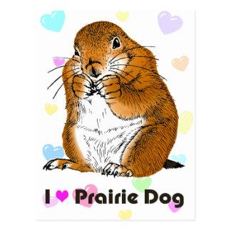 prairie dog which stands postcard