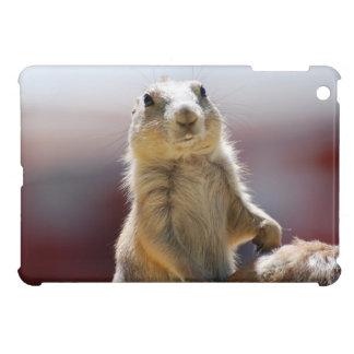 Prairie Dog with Buck Teeth iPad Mini Cases