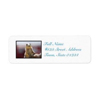 Prairie Dog with Buck Teeth Return Address Label