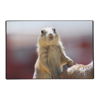Prairie Dog with Buck Teeth Laminated Placemat