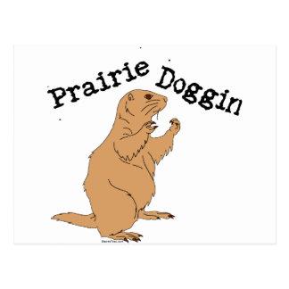 Prairie Doggin Postcard