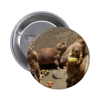 Prairie Dogs Eating Dinner 1 Button