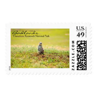 Prairie dogs in the Badlands, ND Postage