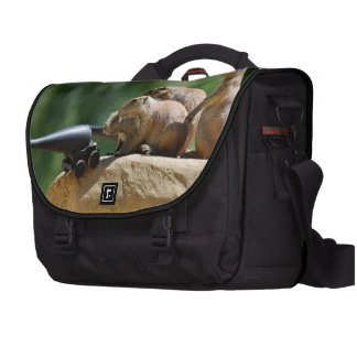 Prairie Dogs Laptop Messenger Bag
