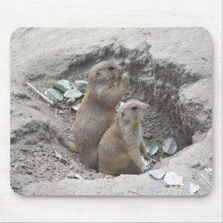 Prairie Dogs Mouse Pad