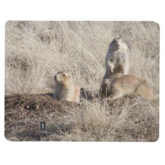 Prairie Dogs photo Journal