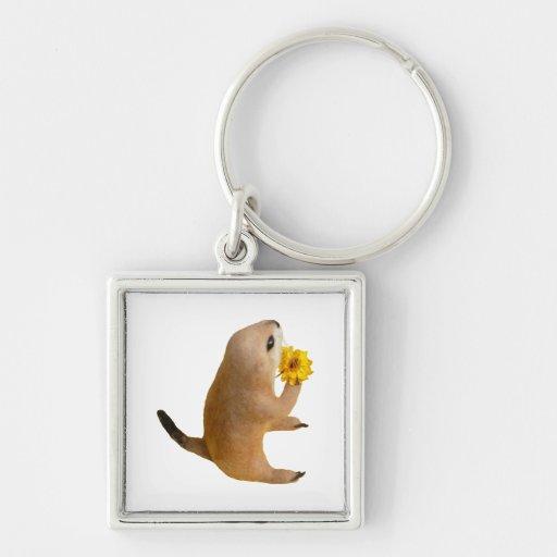 prairie dog's stuffed toy key chain