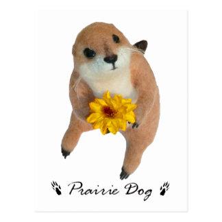 prairie dog's stuffed toy postcard