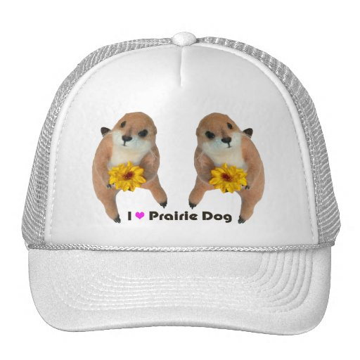Toy Prairie Dog