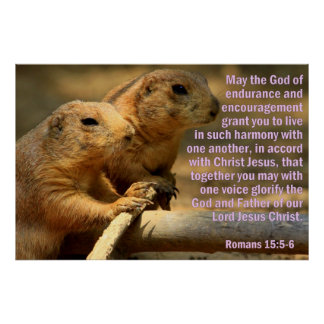 Prairie Dogs with Romans 15:5-6 Poster