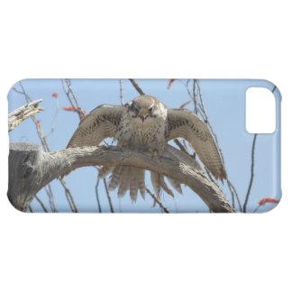 Prairie Falcon iPhone 5C Cover