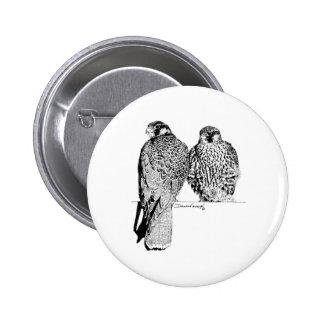 Prairie Falcons Pin