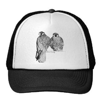 Prairie Falcons Mesh Hats