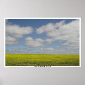 Prairie Fields Print Manitoba Landscape Prints