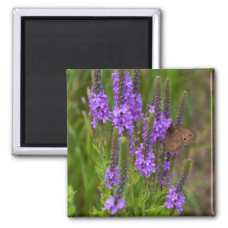 Prairie Flower and Butterfly Magnet