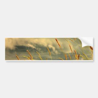 Prairie Grass Bumper Sticker
