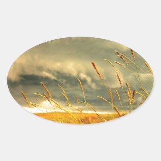 Prairie Grass Oval Sticker