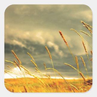 Prairie Grass Square Sticker