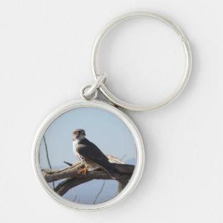 Prairie Hawk Keychain
