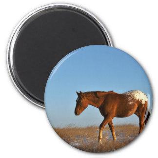 Prairie Horse 2 Inch Round Magnet