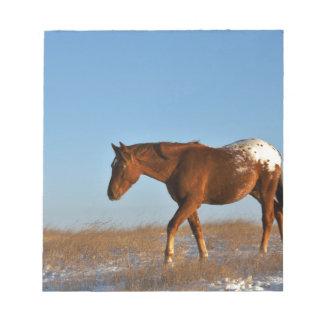 Prairie Horse Notepad