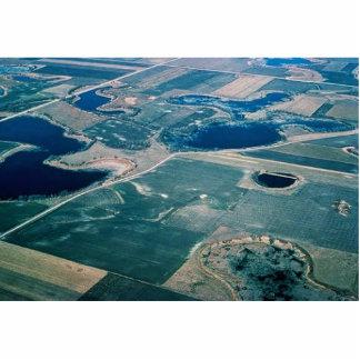 Prairie Potholes, Wetland Cut Outs
