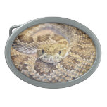 Prairie rattle snake oval belt buckles