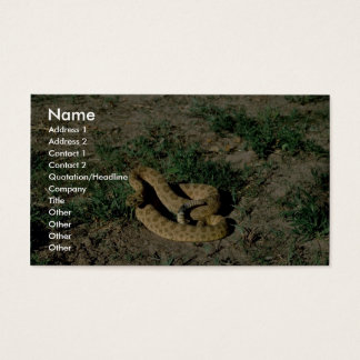 Prairie rattlesnake business card